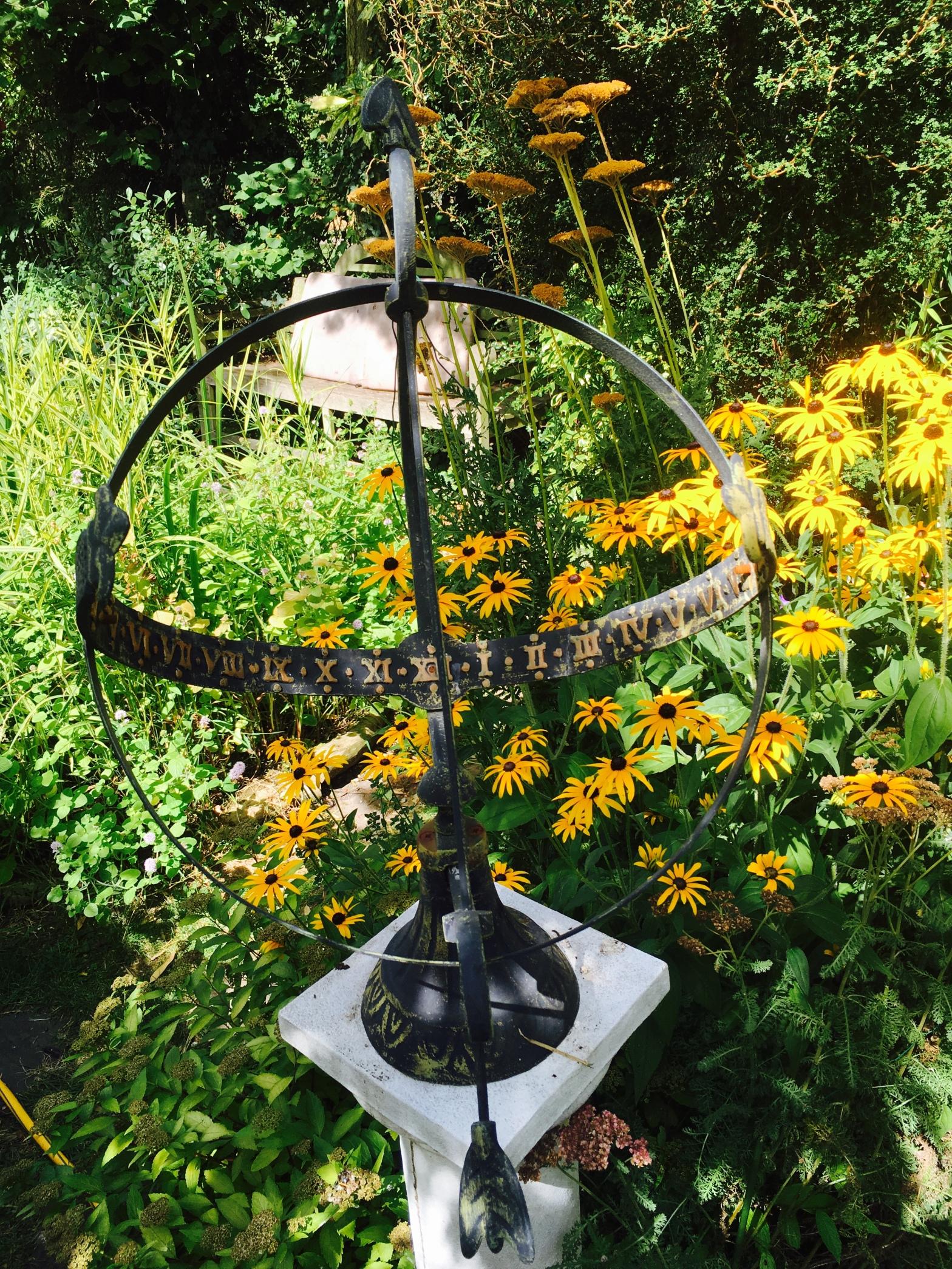 Daisy garden peaceful tranquility